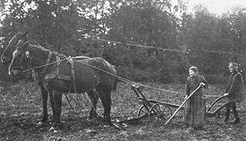 Luwuise und Ham bei der Feldarbeit